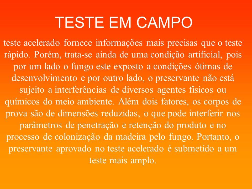 TESTE EM CAMPO