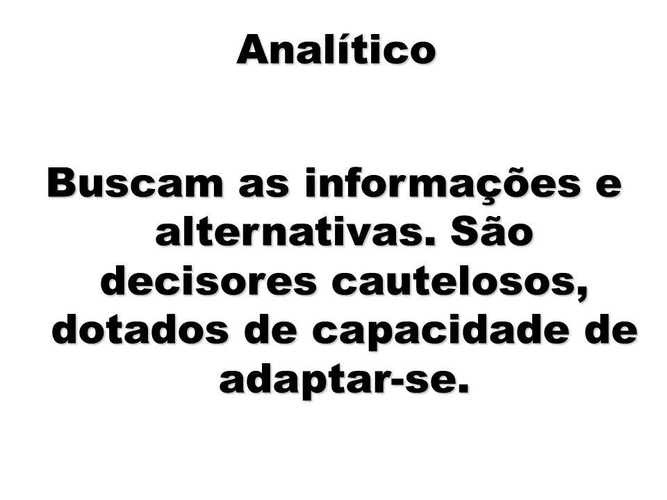 Analítico Buscam as informações e alternativas.