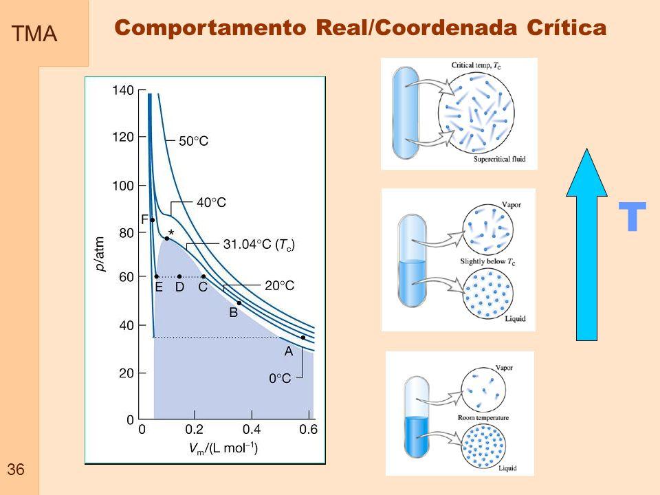 Comportamento Real/Coordenada Crítica