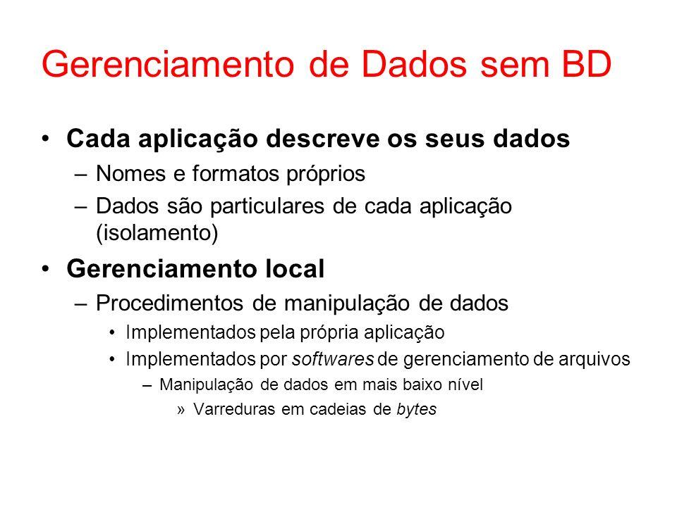 Gerenciamento de Dados sem BD
