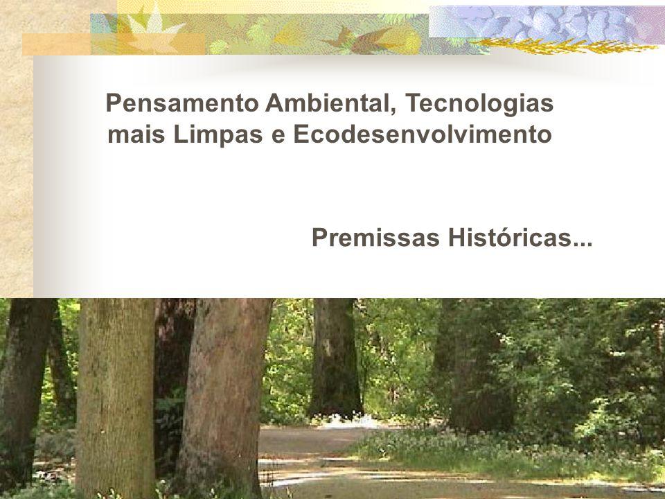 Pensamento Ambiental, Tecnologias mais Limpas e Ecodesenvolvimento