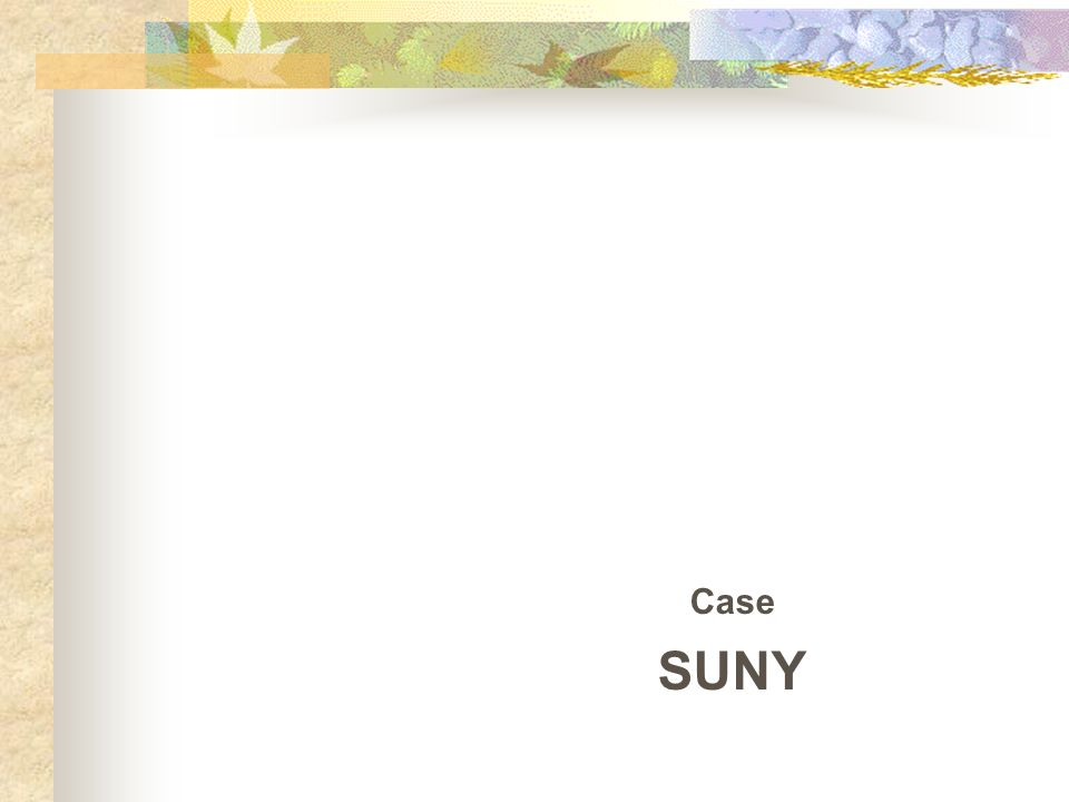 Case SUNY