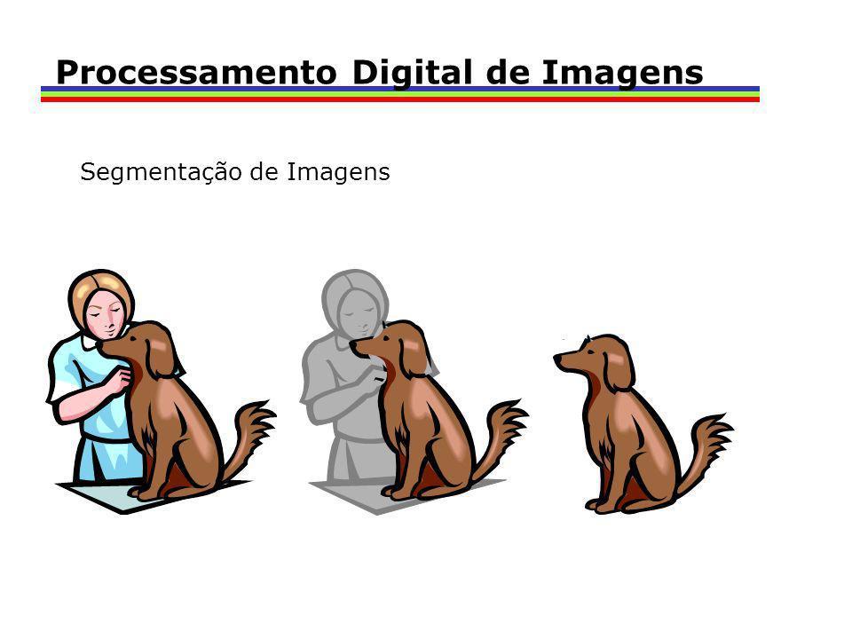 Processamento Digital de Imagens