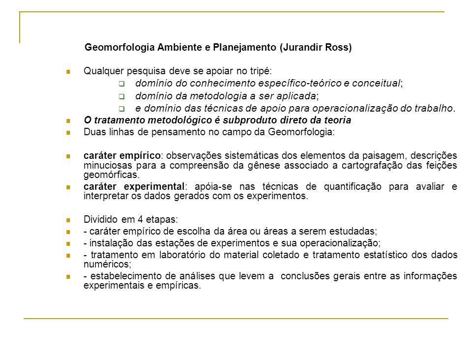 domínio do conhecimento específico-teórico e conceitual;