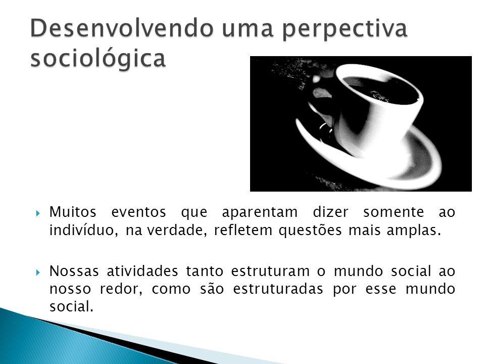 Desenvolvendo uma perpectiva sociológica