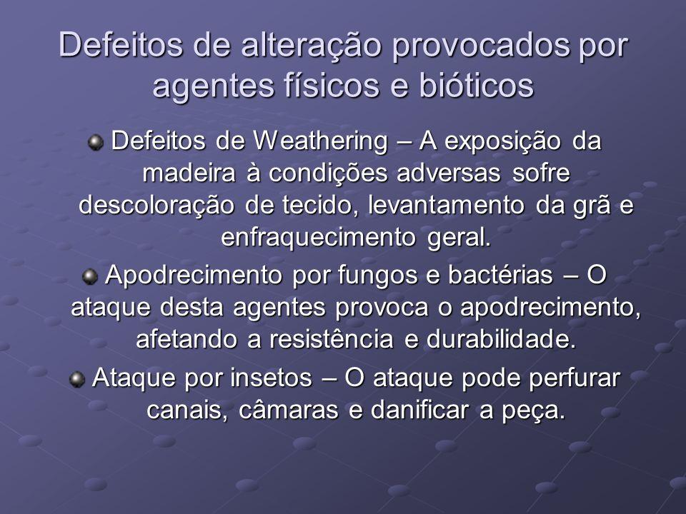 Defeitos de alteração provocados por agentes físicos e bióticos