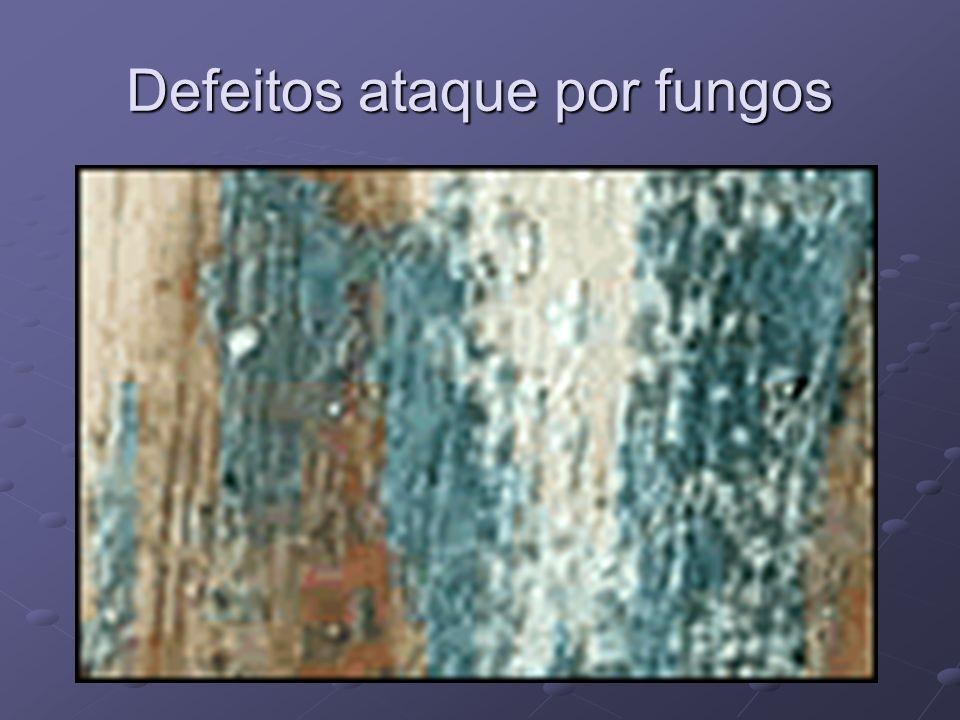 Defeitos ataque por fungos