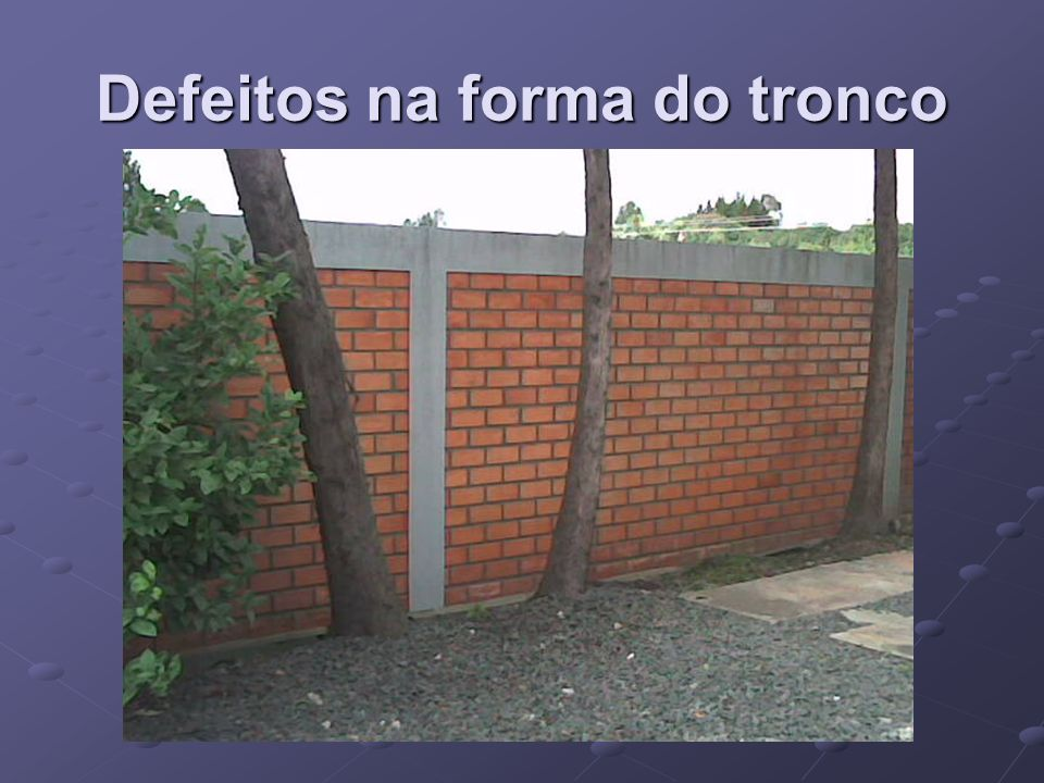 Defeitos na forma do tronco