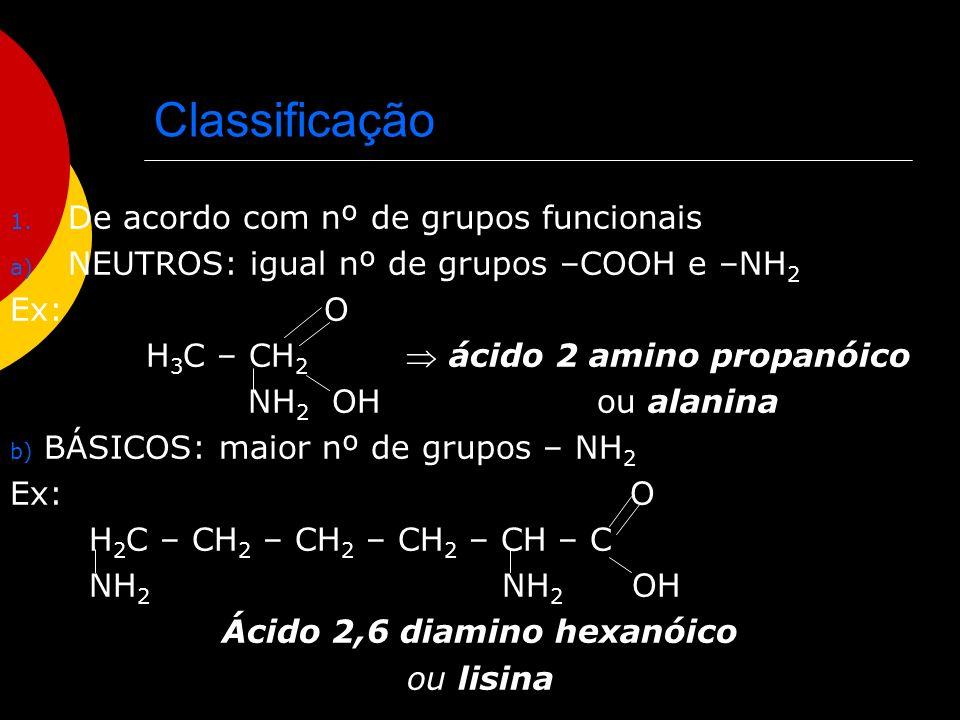 Ácido 2,6 diamino hexanóico