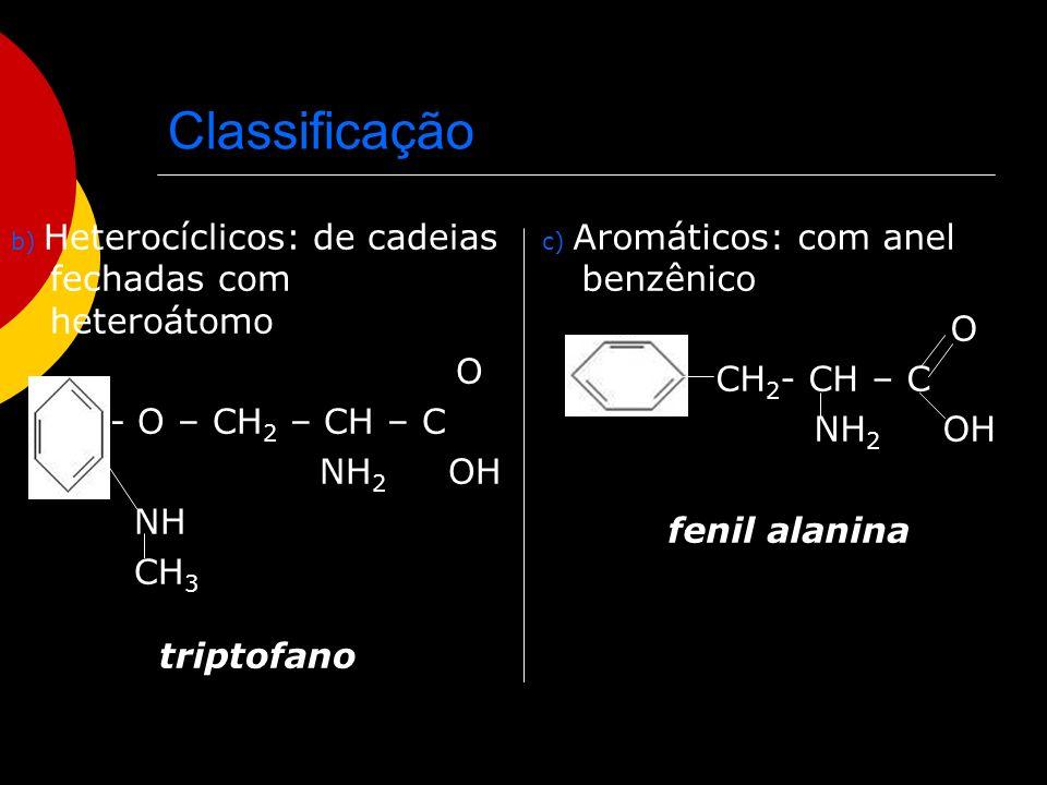Classificação O O CH2- CH – C - O – CH2 – CH – C NH2 OH NH2 OH NH