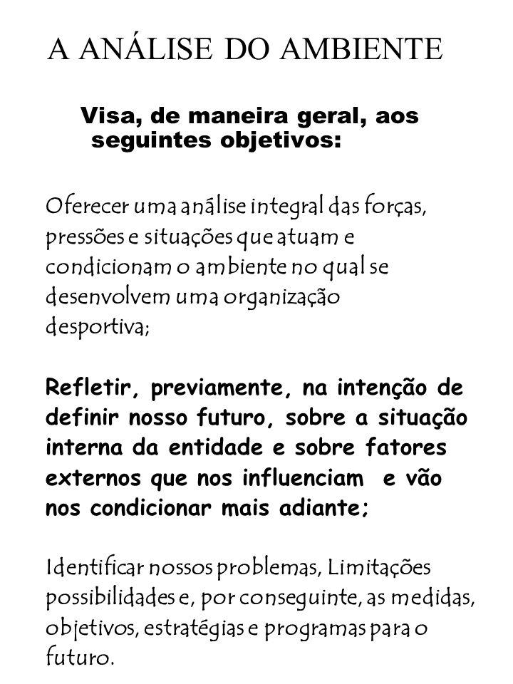 A ANÁLISE DO AMBIENTE Visa, de maneira geral, aos seguintes objetivos: