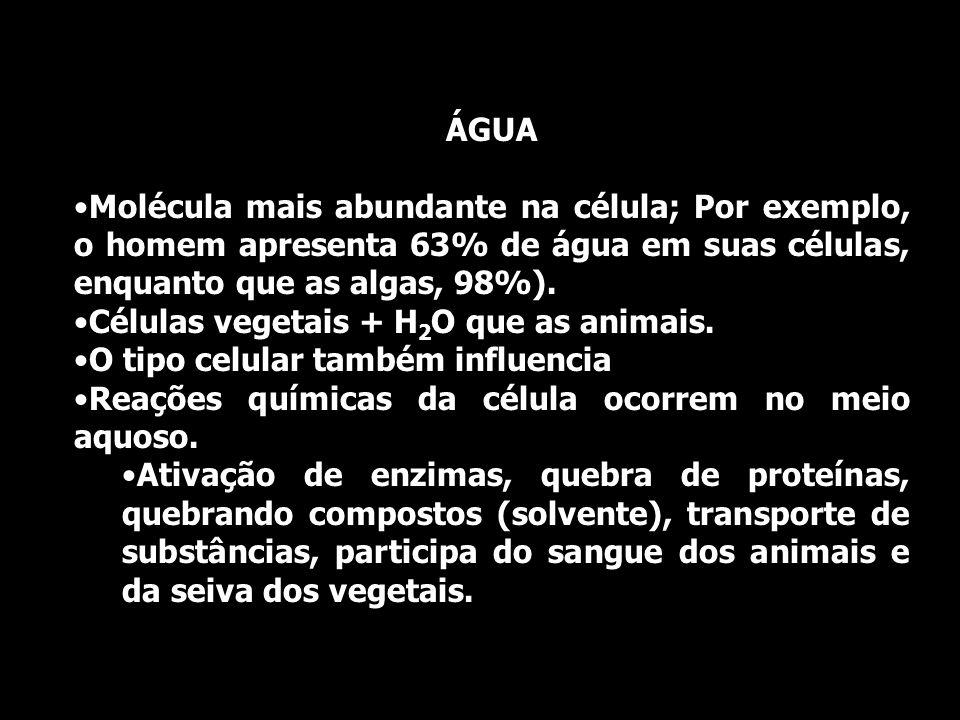 ÁGUA Molécula mais abundante na célula; Por exemplo, o homem apresenta 63% de água em suas células, enquanto que as algas, 98%).