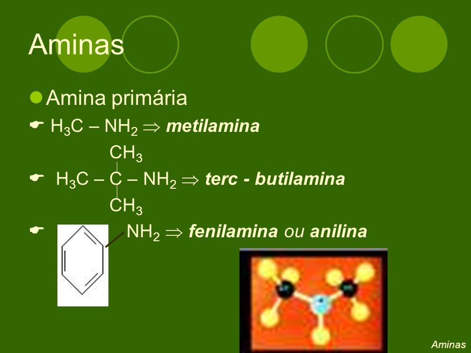 Aminas Amina primária  H3C – NH2  metilamina CH3