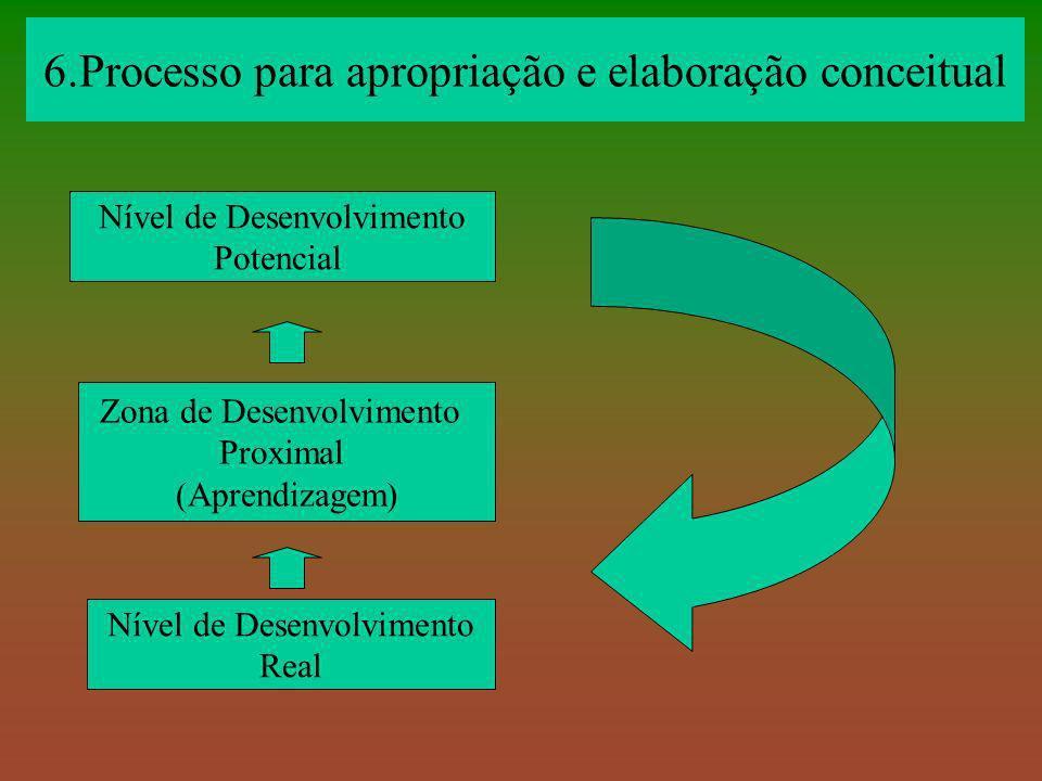 6.Processo para apropriação e elaboração conceitual