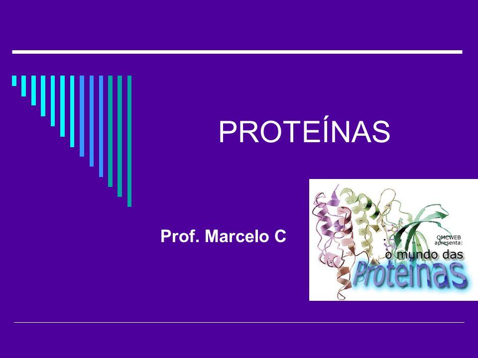 PROTEÍNAS Prof. Marcelo C
