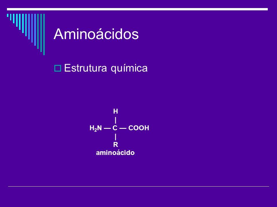 Aminoácidos Estrutura química H | H2N — C — COOH R aminoácido