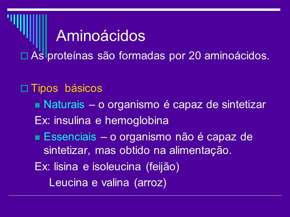Aminoácidos As proteínas são formadas por 20 aminoácidos.