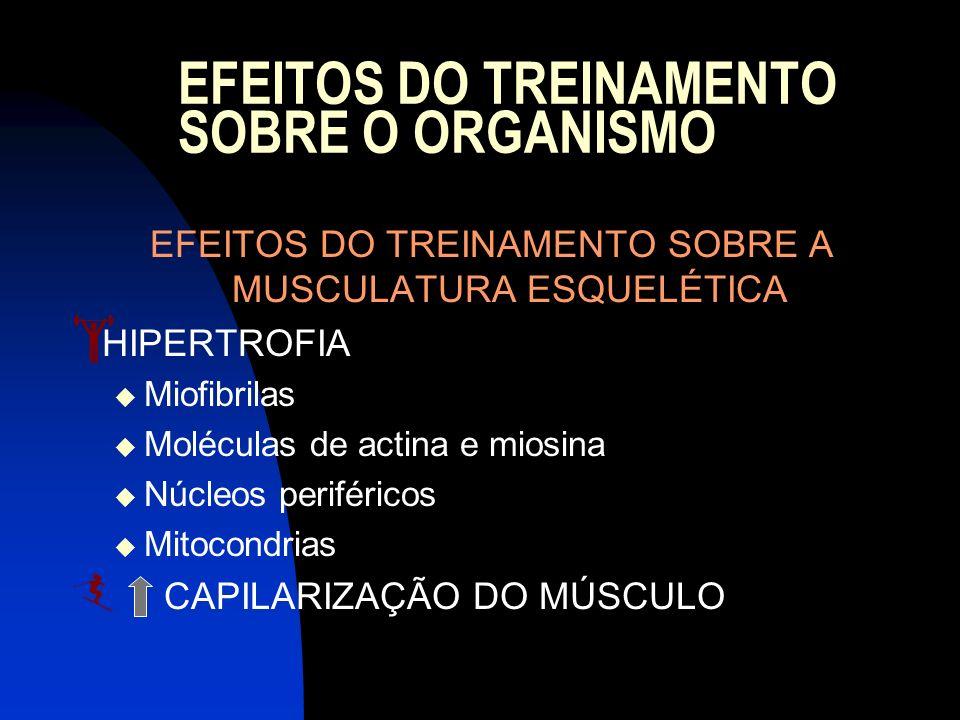 EFEITOS DO TREINAMENTO SOBRE O ORGANISMO