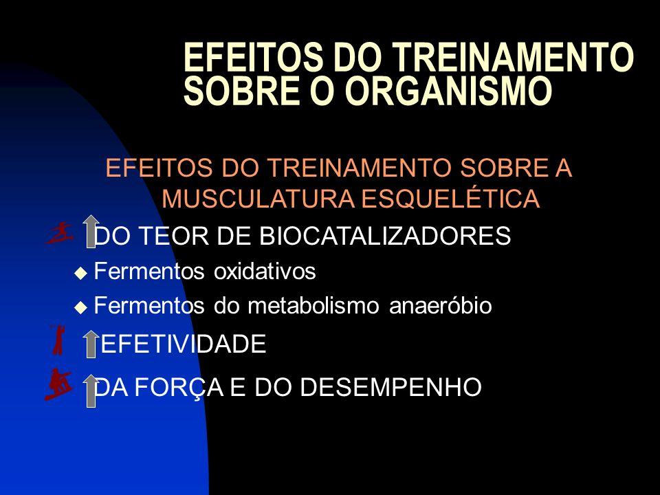EFEITOS DO TREINAMENTO SOBRE A MUSCULATURA ESQUELÉTICA