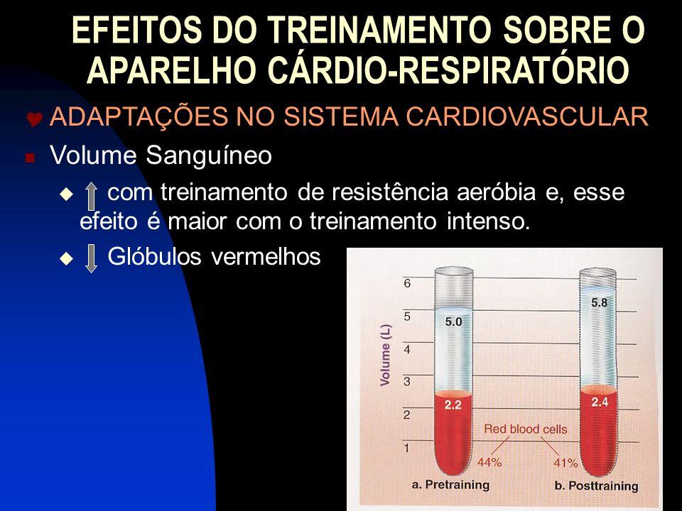 EFEITOS DO TREINAMENTO SOBRE O APARELHO CÁRDIO-RESPIRATÓRIO