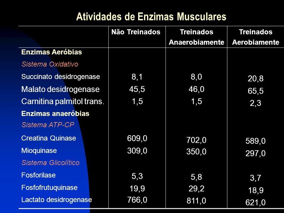 Atividades de Enzimas Musculares