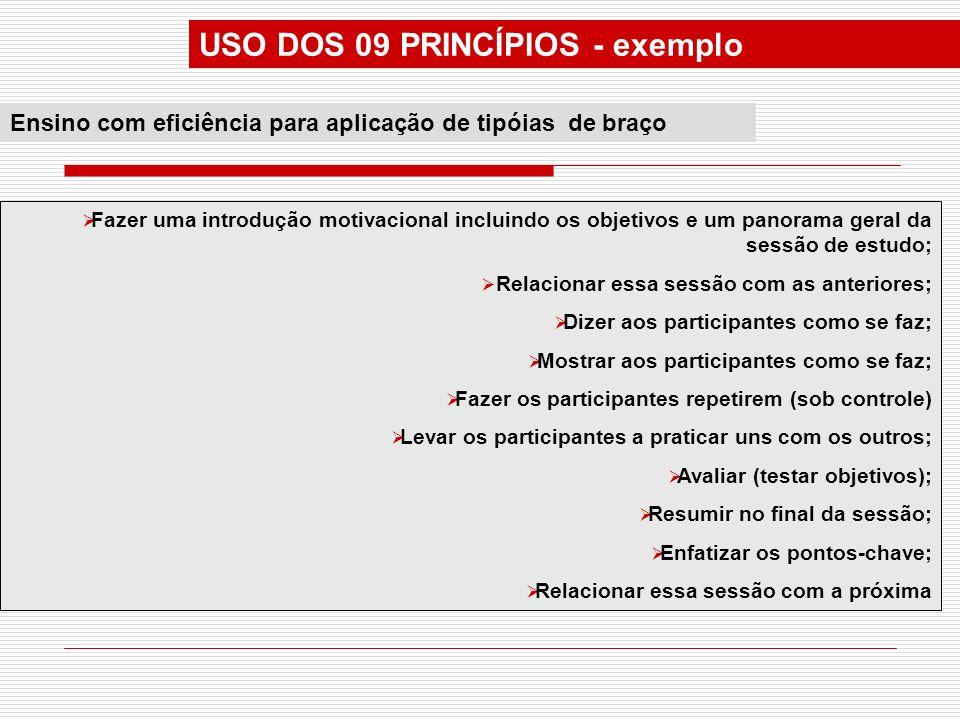 USO DOS 09 PRINCÍPIOS - exemplo