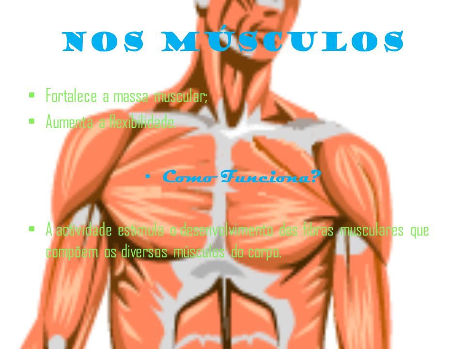 Nos Músculos Fortalece a massa muscular; Aumenta a flexibilidade.