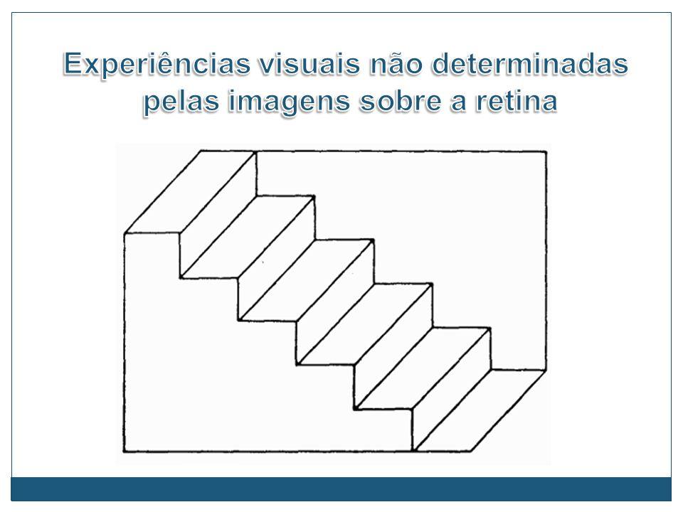 Experiências visuais não determinadas pelas imagens sobre a retina