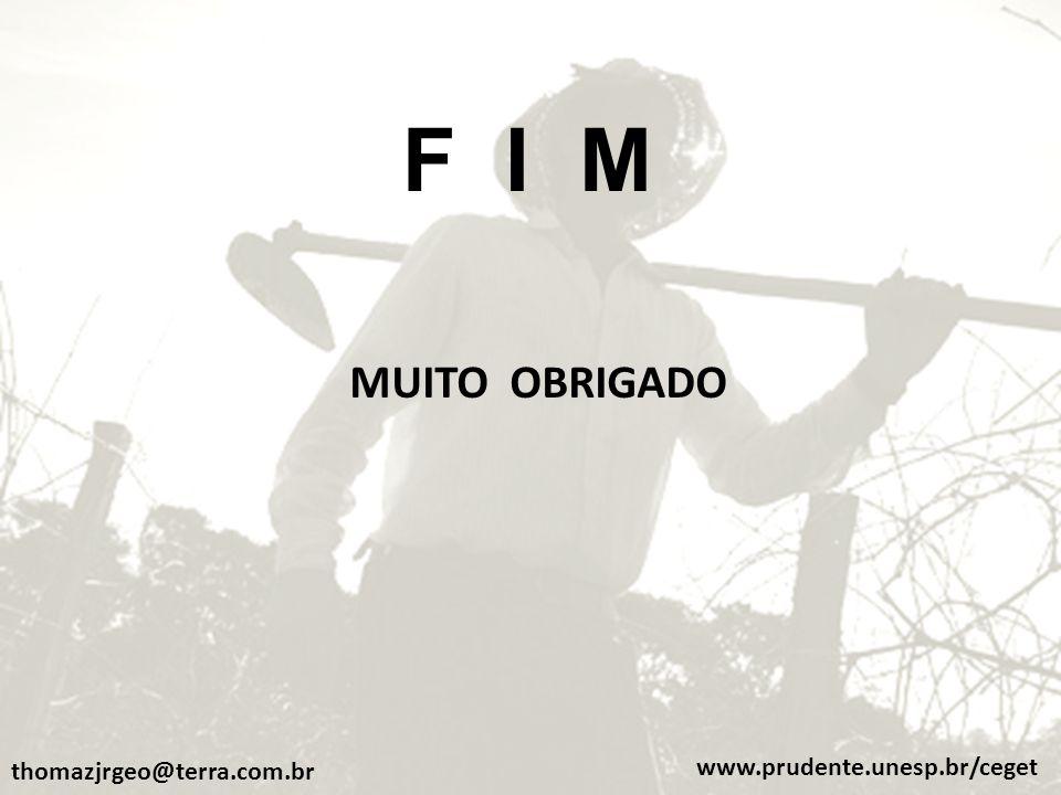 F I M MUITO OBRIGADO www.prudente.unesp.br/ceget