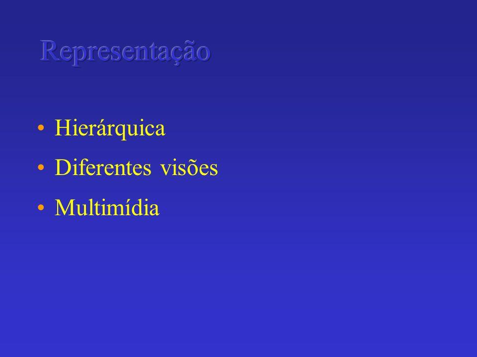 Representação Hierárquica Diferentes visões Multimídia