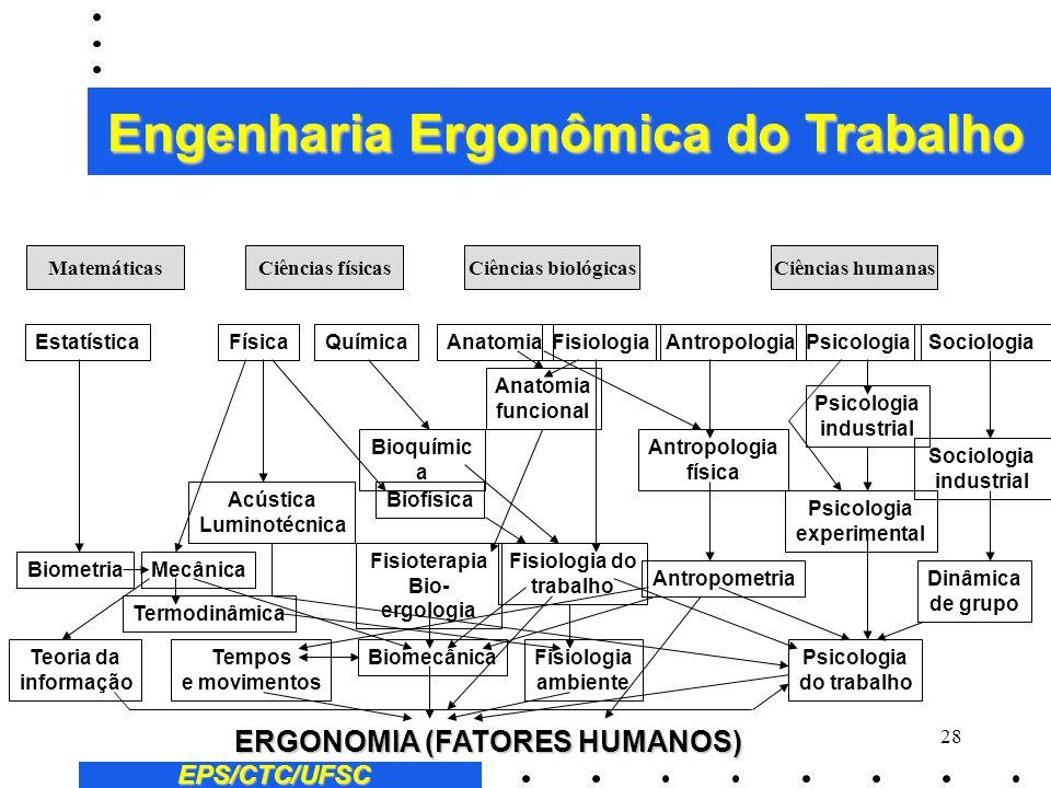 Engenharia Ergonômica do Trabalho ERGONOMIA (FATORES HUMANOS)