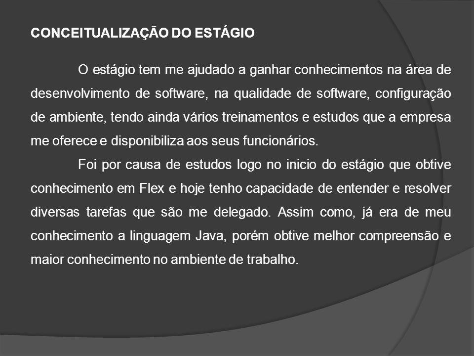 CONCEITUALIZAÇÃO DO ESTÁGIO