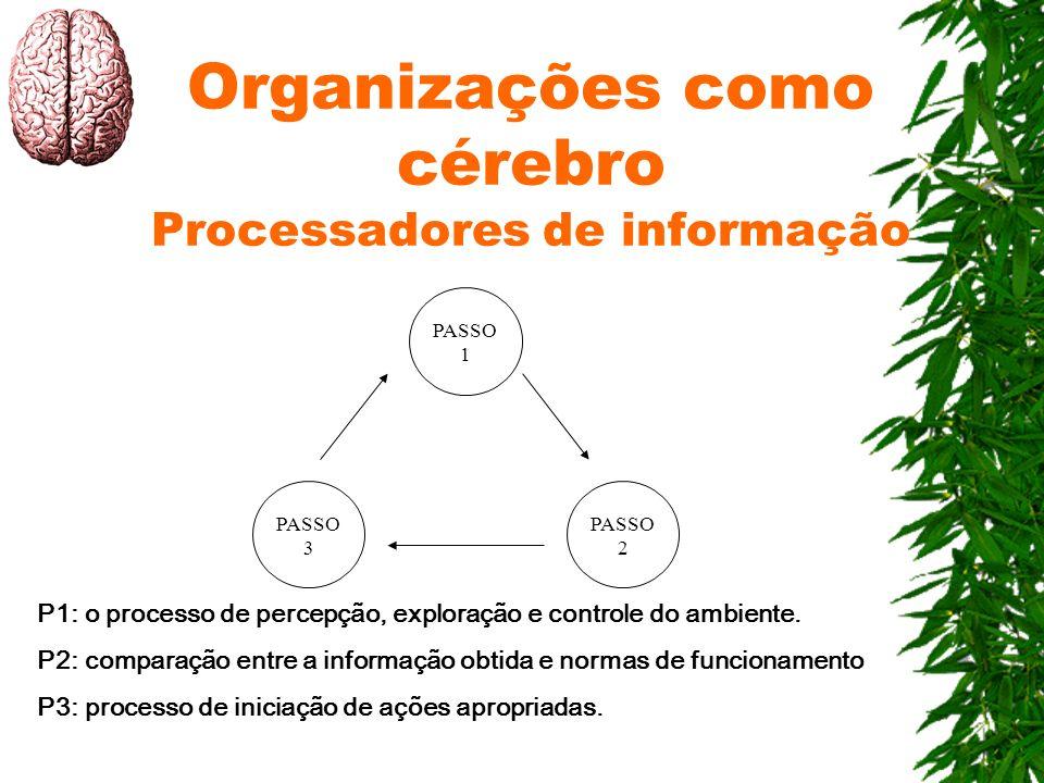 Organizações como cérebro Processadores de informação