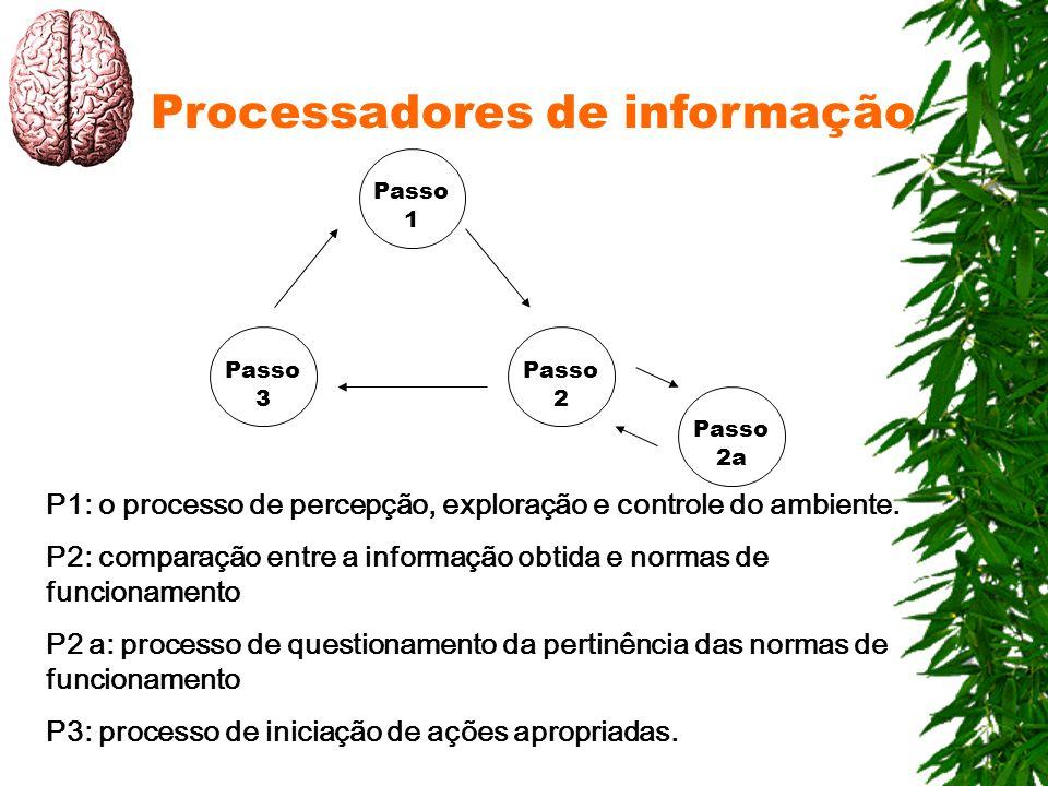 Processadores de informação