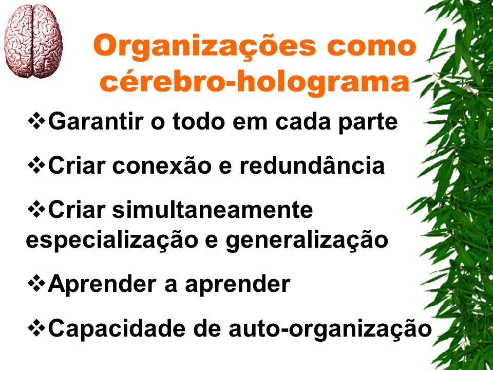 Organizações como cérebro-holograma