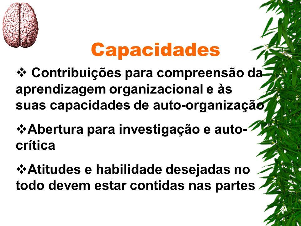 Capacidades Contribuições para compreensão da aprendizagem organizacional e às suas capacidades de auto-organização.