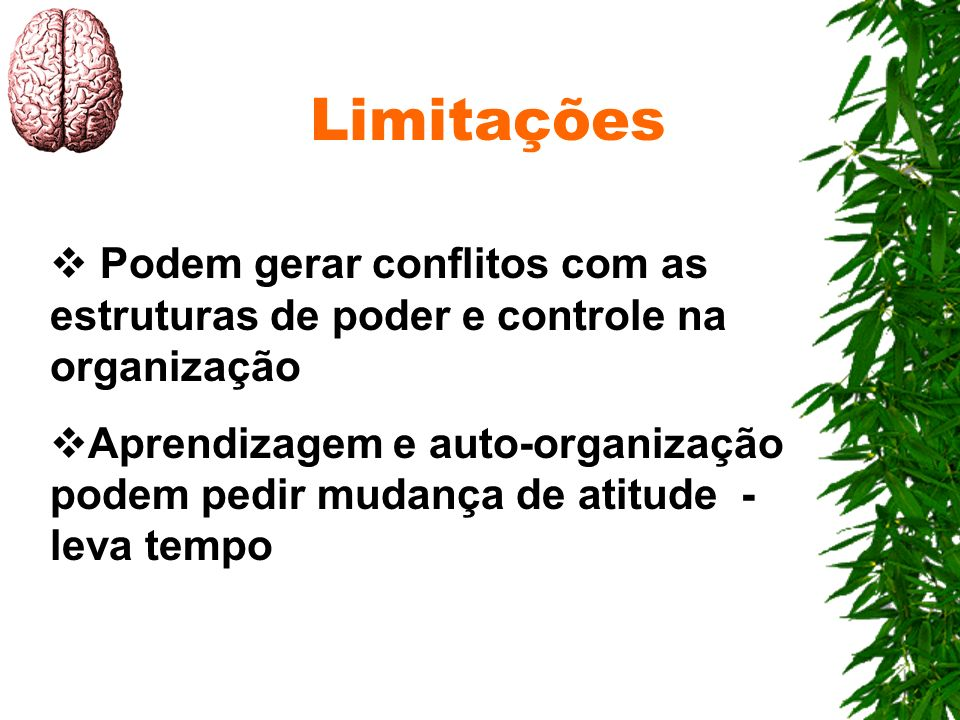 Limitações Podem gerar conflitos com as estruturas de poder e controle na organização.