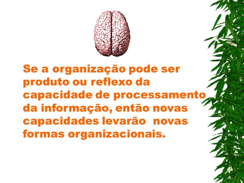 Se a organização pode ser produto ou reflexo da capacidade de processamento da informação, então novas capacidades levarão novas formas organizacionais.