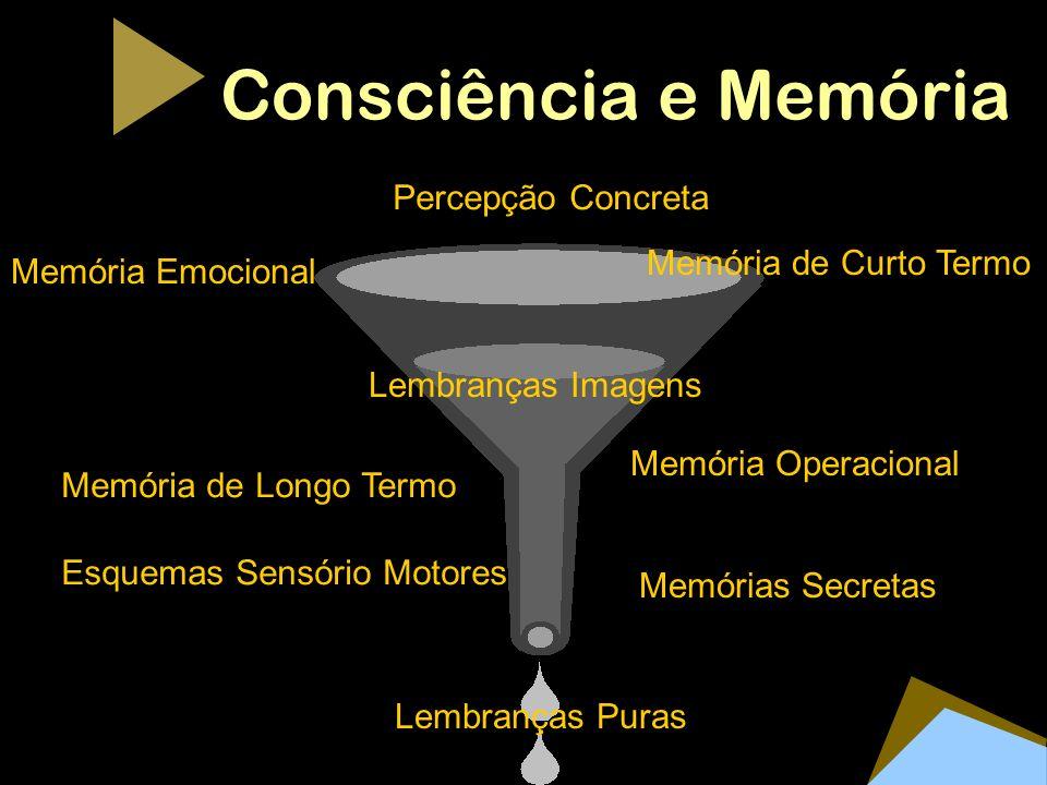 Consciência e Memória Percepção Concreta Memória de Curto Termo