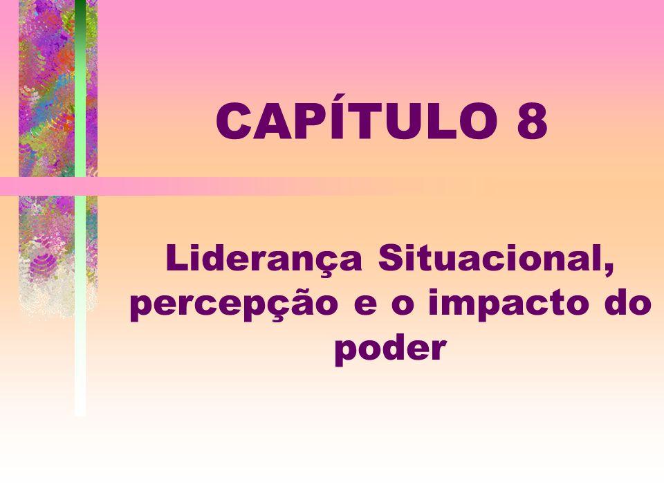 Liderança Situacional, percepção e o impacto do poder