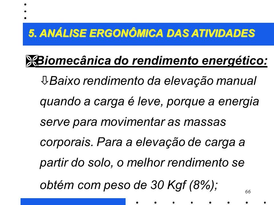 Biomecânica do rendimento energético: