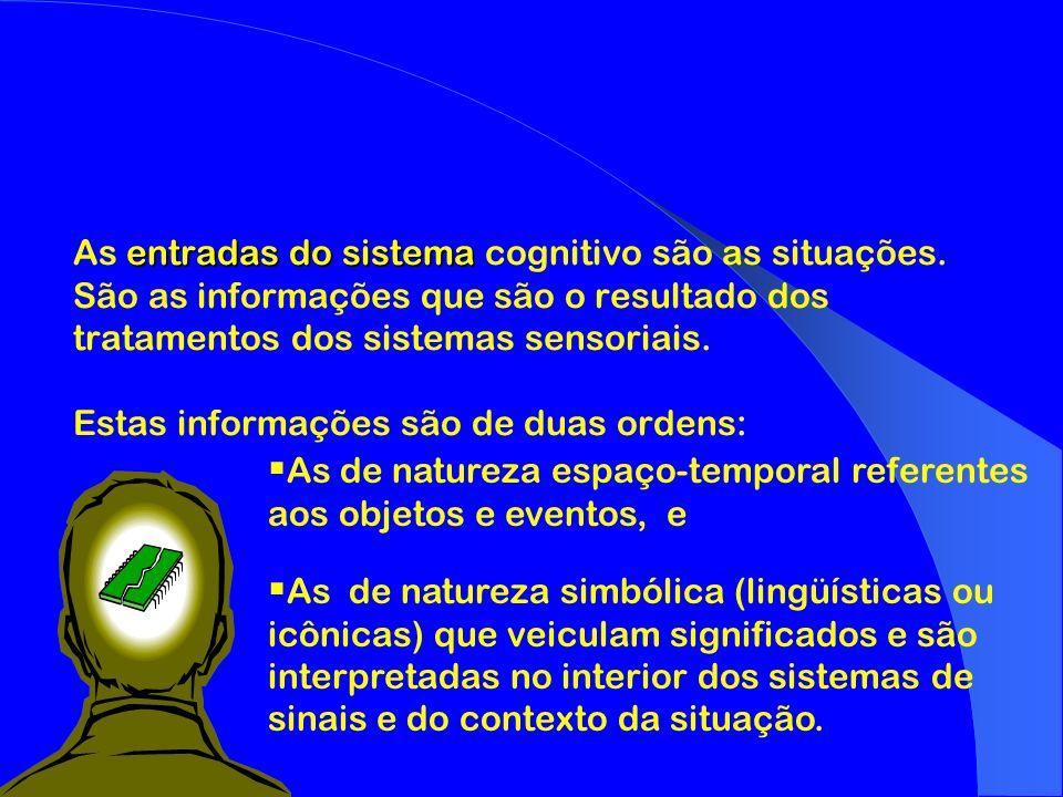 As entradas do sistema cognitivo são as situações