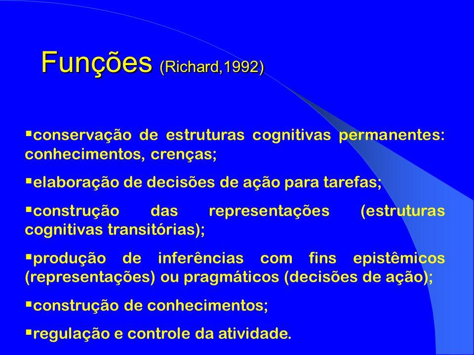 Funções (Richard,1992) conservação de estruturas cognitivas permanentes: conhecimentos, crenças; elaboração de decisões de ação para tarefas;