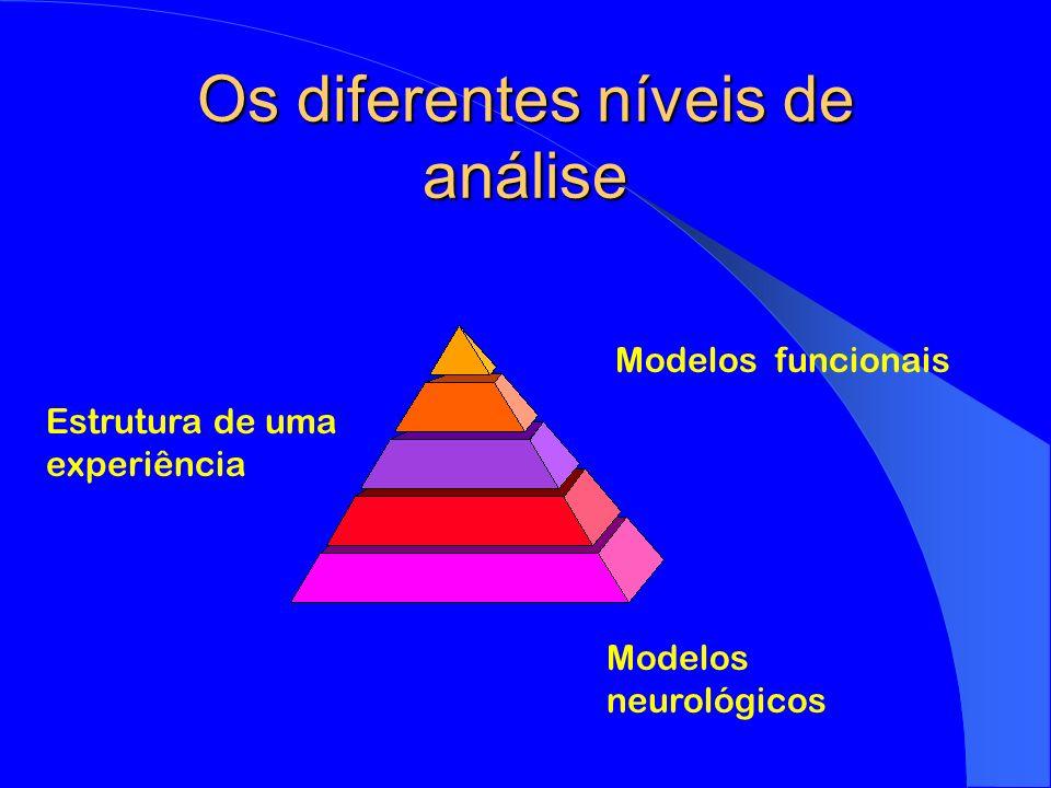 Os diferentes níveis de análise