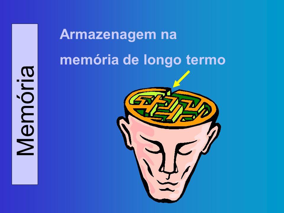 Armazenagem na memória de longo termo Memória