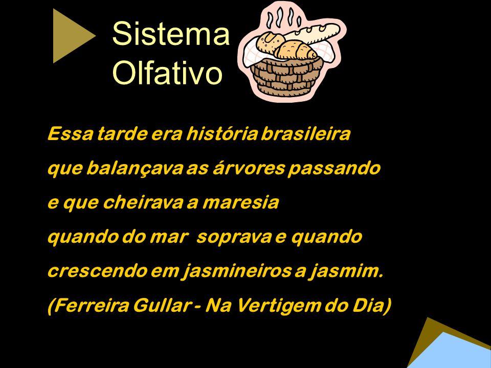 Sistema Olfativo Essa tarde era história brasileira