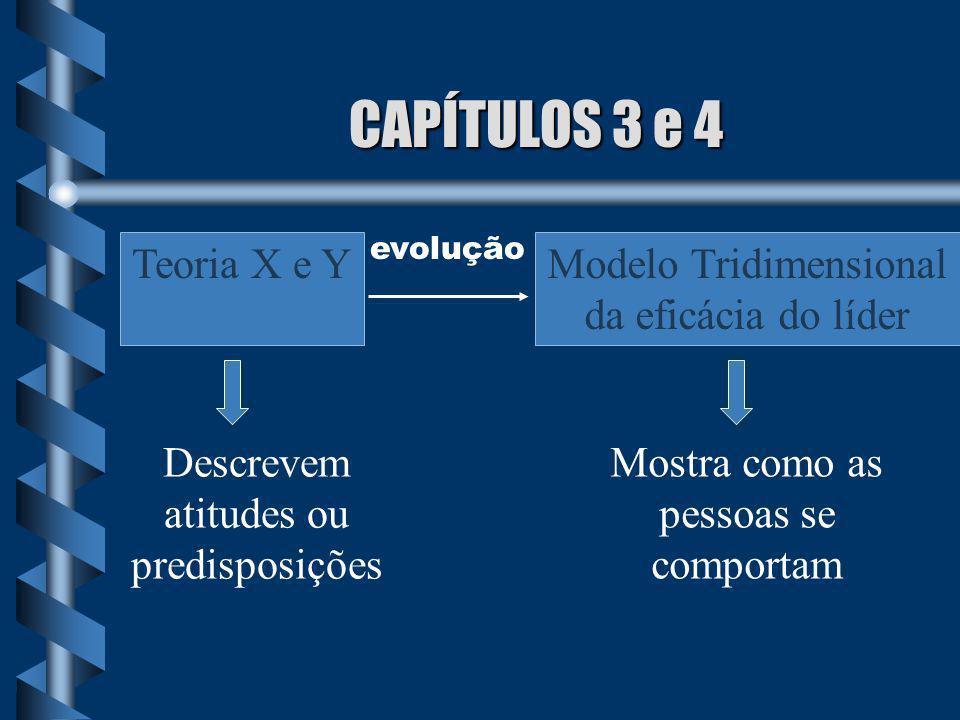 CAPÍTULOS 3 e 4 Teoria X e Y Modelo Tridimensional