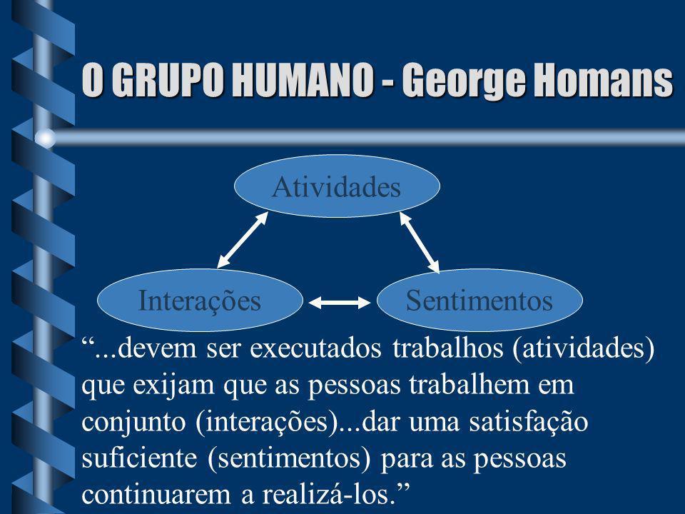 O GRUPO HUMANO - George Homans