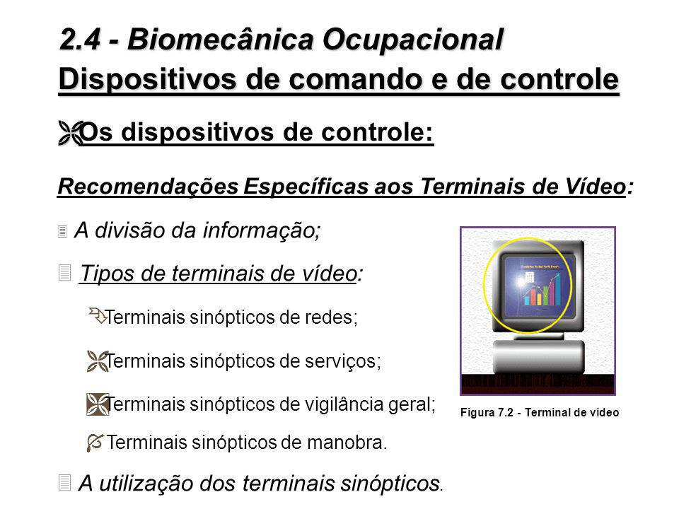 Figura 7.2 - Terminal de vídeo