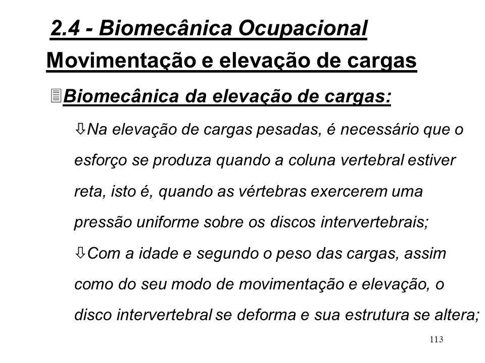 2.4 - Biomecânica Ocupacional